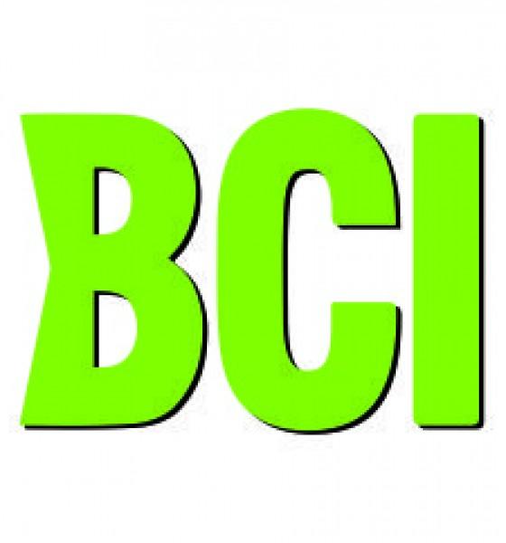 Ne 12s OE BCI